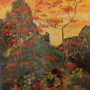Dong Van landscape