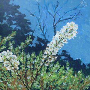 Plum Blossom Season - Minh Chinh