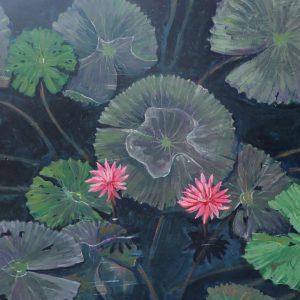 Water Lily Season - Minh Chinh